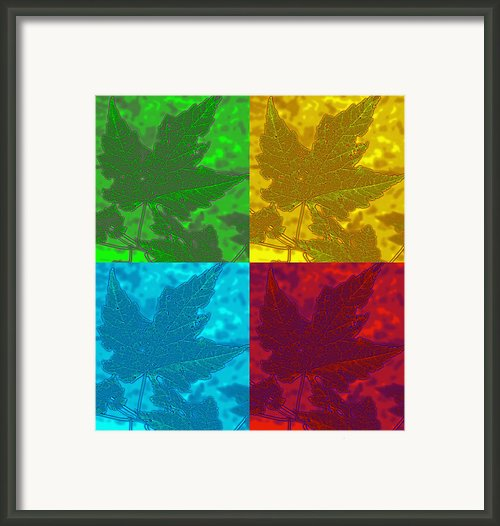 Leaf Pop Art Framed Print By Barbara Mcdevitt
