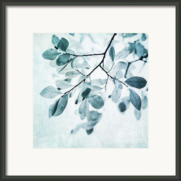 Leaves In Dusty Blue Framed Print By Priska Wettstein