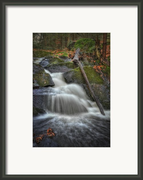 Let It Flow Framed Print By Evelina Kremsdorf