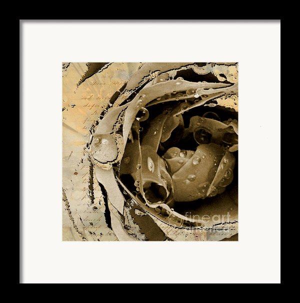 Life Ii Framed Print By Yanni Theodorou