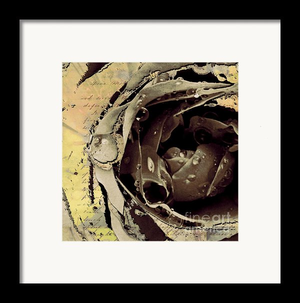 Life Iii Framed Print By Yanni Theodorou