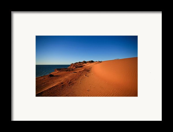 Life Framed Print By Shari Mattox