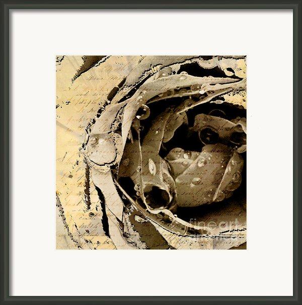 Life Vi Framed Print By Yanni Theodorou