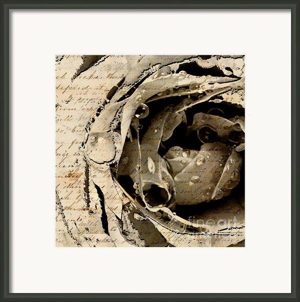 Life Vii Framed Print By Yanni Theodorou