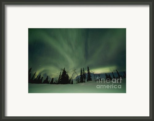 Light Dancers Framed Print By Priska Wettstein