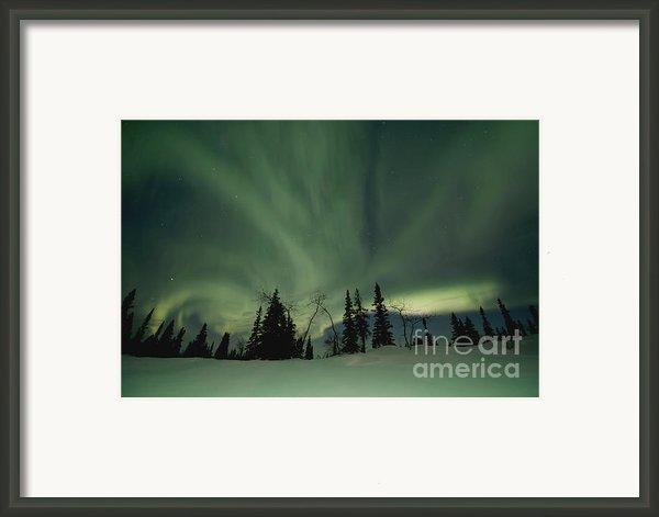 Light Dancers Framed Print By Priska Wettstein