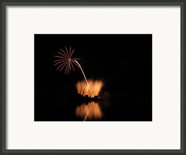 Light Flower Framed Print By Donnie Freeman