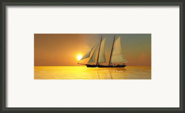 Light Of Life Framed Print By Corey Ford