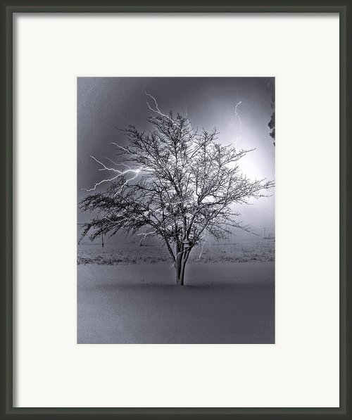 Lighten-up Framed Print By Tom Druin