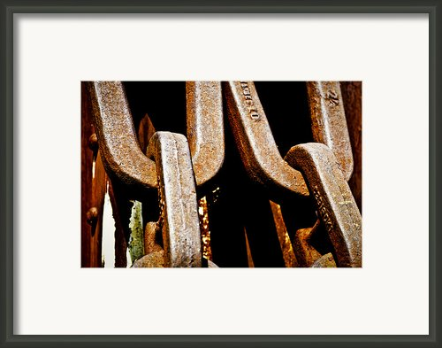 Linked Up Framed Print By Christi Kraft
