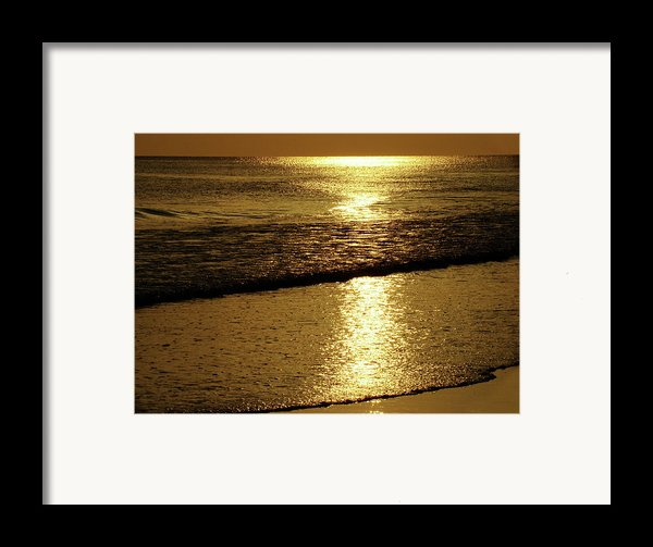Liquid Gold Framed Print By Sandy Keeton