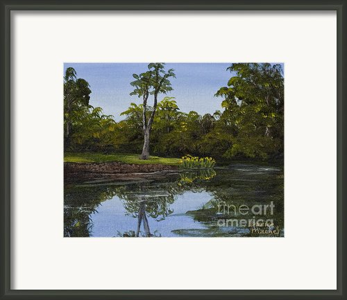 Little Chico Pond Framed Print By Darice Machel Mcguire
