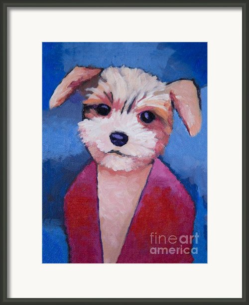 Little Dog Framed Print By Lutz Baar