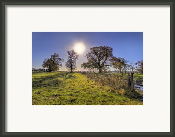 Little Gaddesden Morning Framed Print By David Dwight