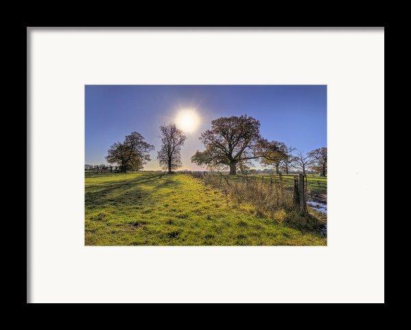 Little Gaddesden Morning Framed Print By David Dwight
