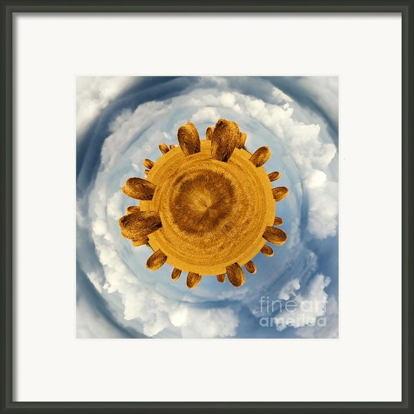 Little Planet Hay Bales Framed Print By Jane Rix