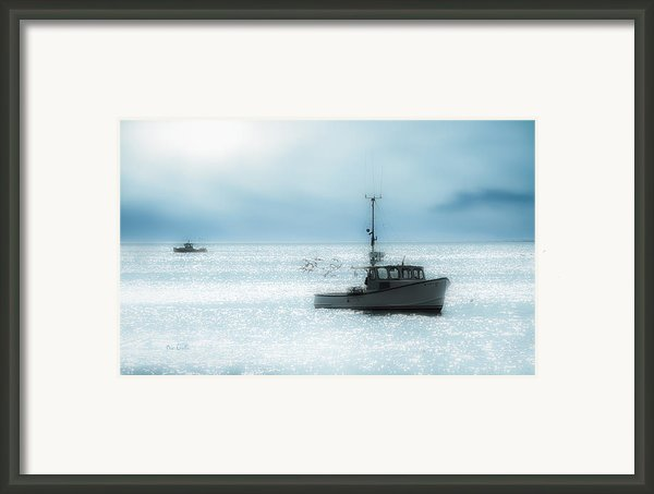 Lobster Framed Print By Bob Orsillo