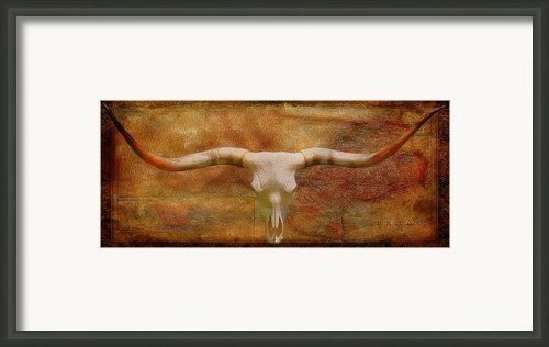 Longhorn Of Texas Framed Print By Jack Zulli