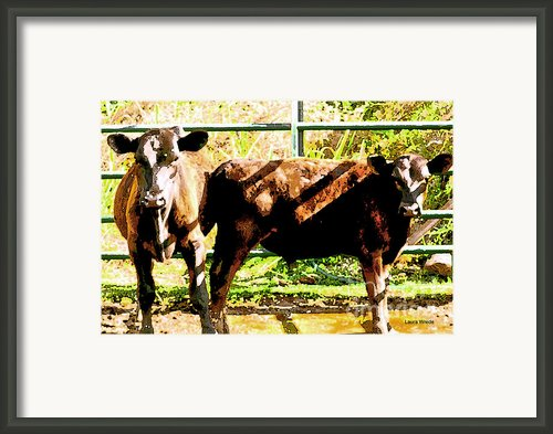 Looking At You Framed Print By Author And Photographer Laura Wrede