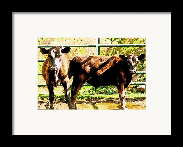 Looking At You Framed Print By Artist And Photographer Laura Wrede