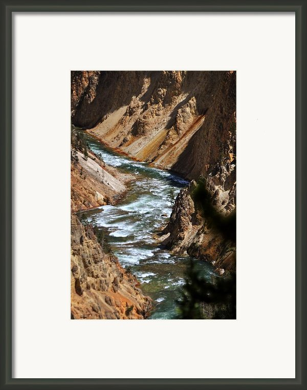 Looking Down Framed Print By Marty Koch