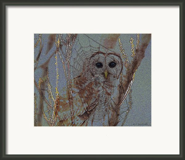 Looking Through The Web Framed Print By J Larry Walker