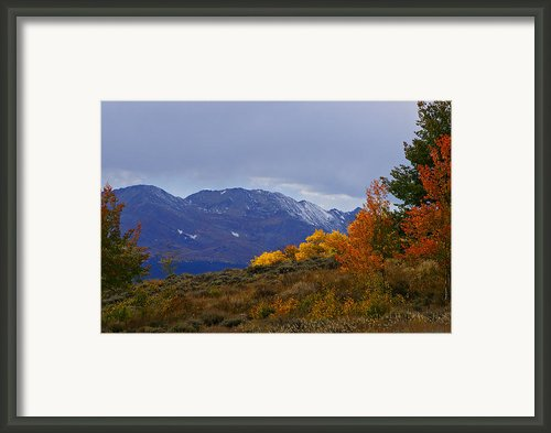 Lost In Autumn Framed Print By Jeremy Rhoades