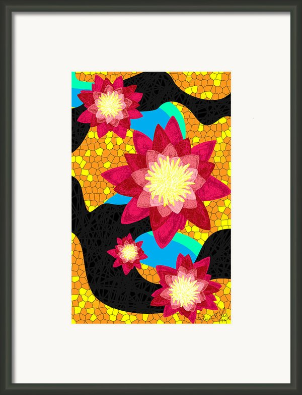 Lotus Flower Bombs In Magenta Framed Print By Kenal Louis