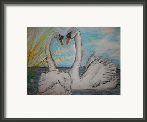 Love Birds Framed Print By Jake Huenink