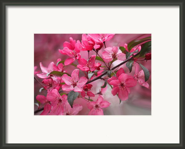 Love Is Eternal Framed Print By Sweet Moments Photography