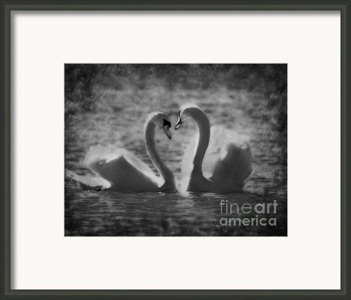 Love Is.. Framed Print By Nina Stavlund