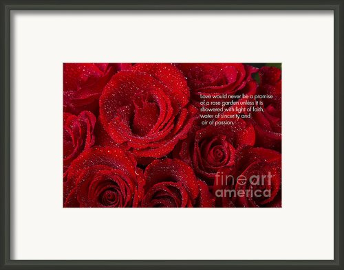 Love Would Never Be A Promise Of A Rose Garden Framed Print By James Bo Insogna