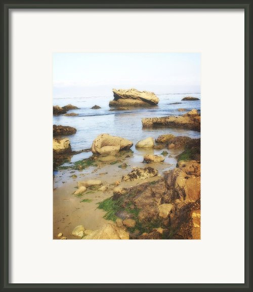 Low Tide Framed Print By Marty Koch