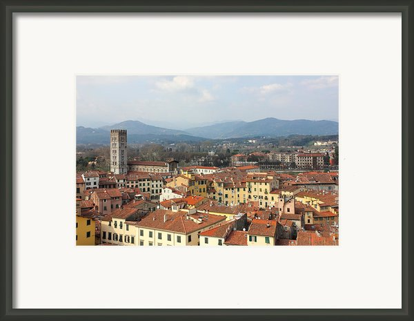Lucca Aerial Panoramic View With Piazza Dell