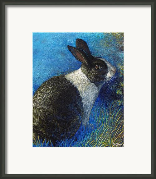 Lucky Blue Framed Print By Cara Bevan