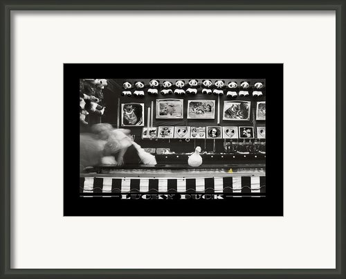Lucky Duck Framed Print By Mike Mcglothlen