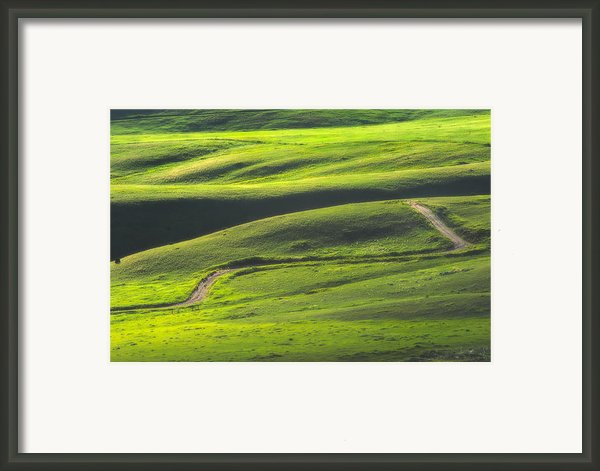 Luminous Green  Framed Print By Joan Herwig