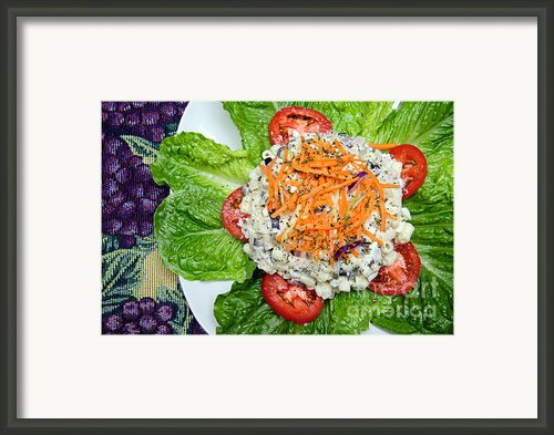 Macaroni Salad 1 Framed Print By Andee Photography