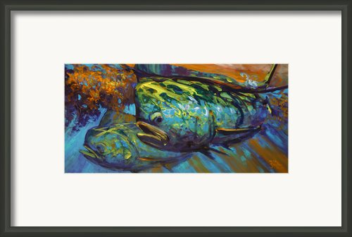 Mahi At Sunset Framed Print By Mike Savlen