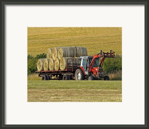 Make Hay When Sun Shines Framed Print By Paul Scoullar