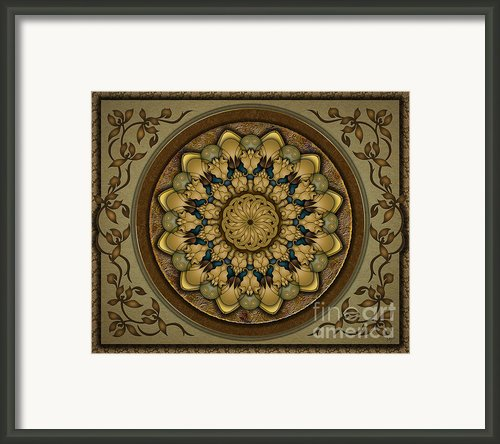 Mandala Earth Shell Sp Framed Print By Bedros Awak