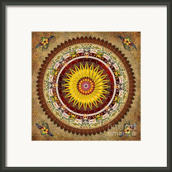 Mandala Sunflower Framed Print By Bedros Awak