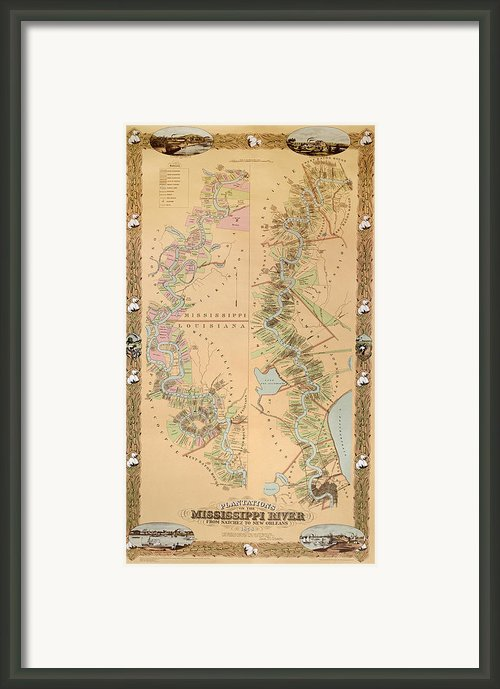 Map Depicting Plantations On The Mississippi River From Natchez To New Orleans Framed Print By American School