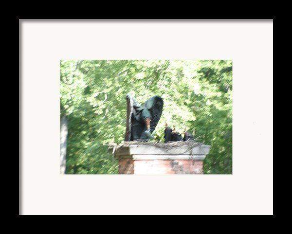 Maryland Renaissance Festival - People - 121272 Framed Print By Dc Photographer