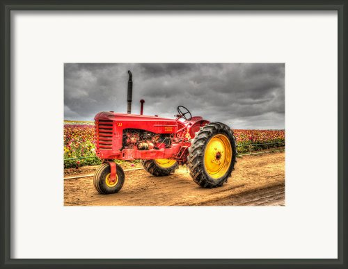 Massey Framed Print By Heidi Smith