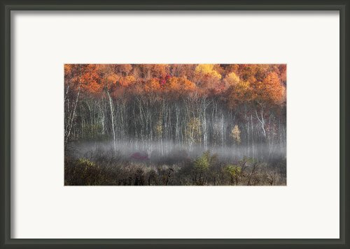 Meeker Swamp Framed Print By Bill  Wakeley