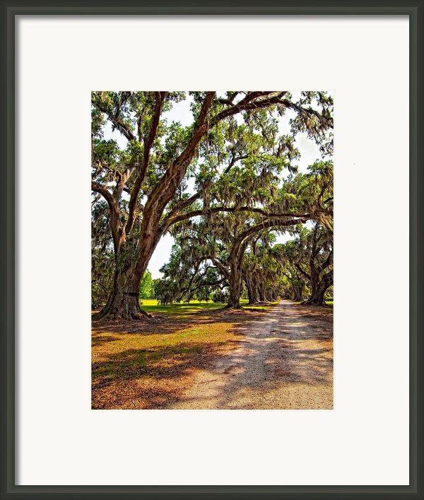 Memory Lane Framed Print By Steve Harrington