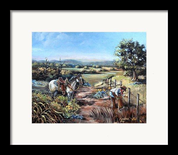 Mending Fence Framed Print By Cynara Shelton