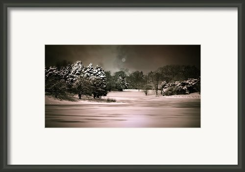 Midnight Stillness Framed Print By Julie Palencia