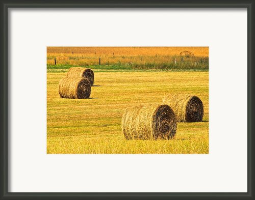 Midwest Farming Framed Print By Robert Harmon